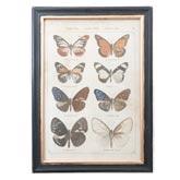 Schilderij vlinders