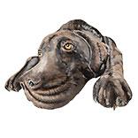 Wanddecoratie hond