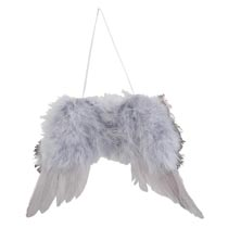 Hanger vleugel