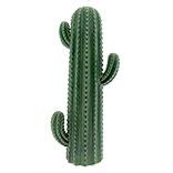 Decoratie cactus