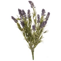 Decoration lavender