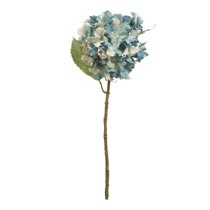 Decoratie hortensia
