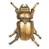 Decoratie insect