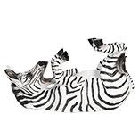 Flessenhouder zebra