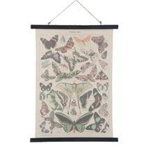 Wandkaart vlinders