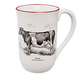 Mok groot koe